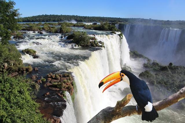 iguazu falls activities