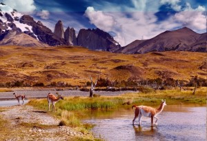 A photo of Torres del Paine in Chilean Patagonia