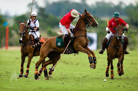 Polo players in Argentina